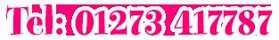 Telephone 01273 417787